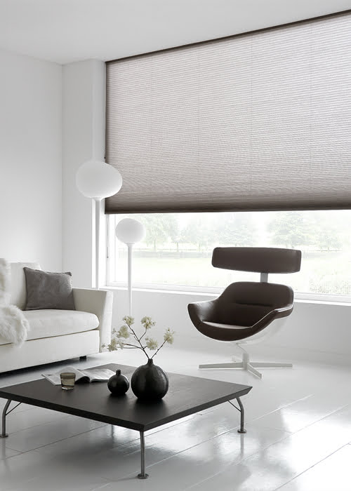 duette-shades-raambekleding-500x700-9-kleur-op-kleur-interieur