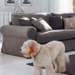 kleur-op-kleur-interieur-ip-design-meubels-banken-klassiek-modern-totaal-interieur--500x700-1