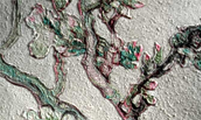 Van Gogh Behang : Beste afbeeldingen van behang wall papers paint en wallpaper