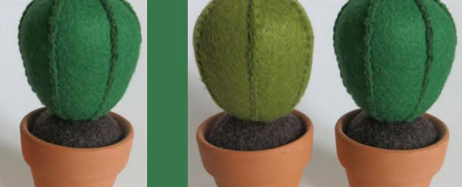 cactus-van-vilt-inspiratie-kleur-op-kleur-interieur-780x455-201511