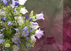 karpet-wol-kleurverloop-kleurrijk-780x50-kleur-op-kleur-interieur-1