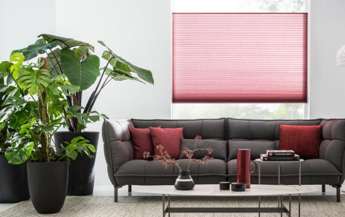 sunway-plisse-duette-45mm-800-kleuren-top-down-systeem-raambekleding-modern-strak-kleurrijk-kleur-op-kleur-interieur-780x455-5